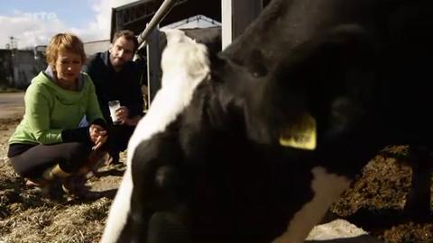 Le lait est-il aussi sain qu'on le prétend ? – Xenius
