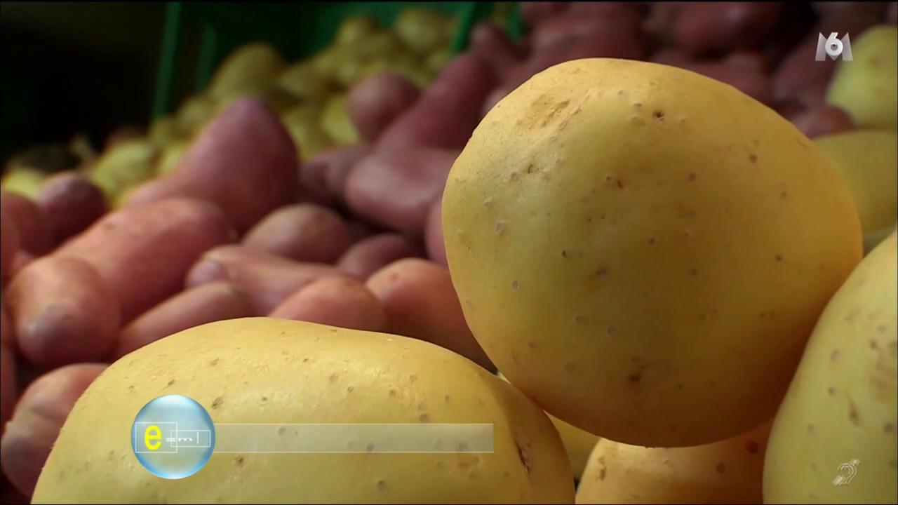 Les secrets scientifiques de ces aliments que nous croyons connaître-E=M6
