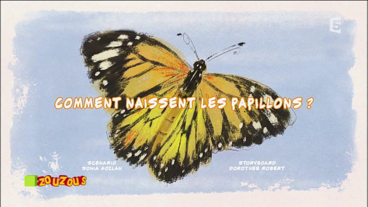 Comment naissent les papillons ? – Les carnets nature de Lulu Vroumette