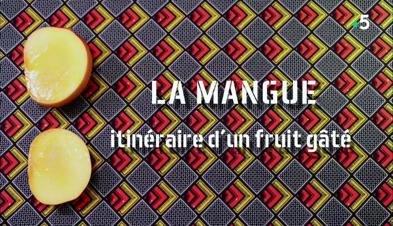 Les docs du dimanche – la mangue, itinéraire d'un fruit gâché